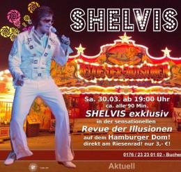 shelvis
