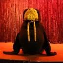 walrus5